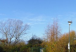Blue skies and bare trees at the Environment Centre