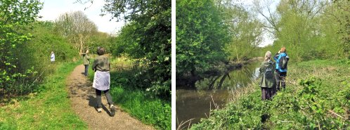 Wildwatch in action! Left: looking for Blackcaps Right: looking for Kingfishers