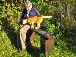 """""""Ginger"""" joining in with the Wildwatch Group!"""