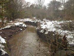A snowy Tang Hall Beck