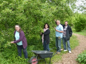 Bearing Fruit volunteers