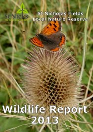 St Nicks Wildlife Report 2013