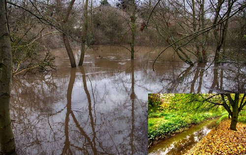 Tang Hall Beck flooded. Inset.. the beck under normal conditions. Photos by Lewis Outing.