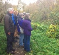 "The nearest we've had to a ""twitch"" at St Nicks.. Wildwatchers waiting to see the Water Rail on Osbaldwick Beck."