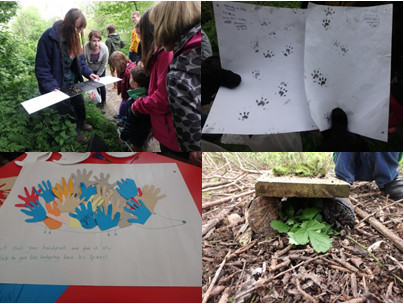 Clockwise from top left: checking mammal tunnels, mammal footprints, hedgehog hand poster, hedgehog home