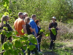 Nature walk for ecotherapy