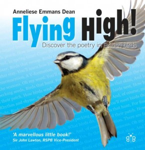 Flying High! cover