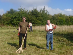 Robert (left) & Joe (right) mowing the meadow using scyths