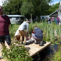 Wastebusters Fest - pond dipping (by Jane Segaran)