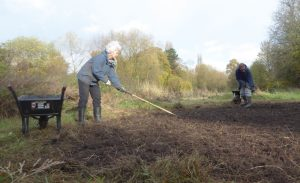 Clearing soil at Heworth Holme