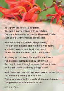 A beautiful poem written by a member of our creative writing ecotherapy group on how nature improves wellbeing.