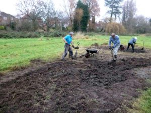 Digging scrapes at Heworth Holme