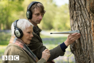 Alex Metcalfe listening to a tree with Judi Dench, courtesy of A. Metcalfe