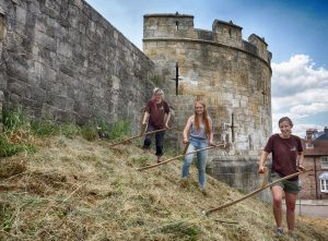 3 Meadow Keepers scything city walls, by Lewis Outing