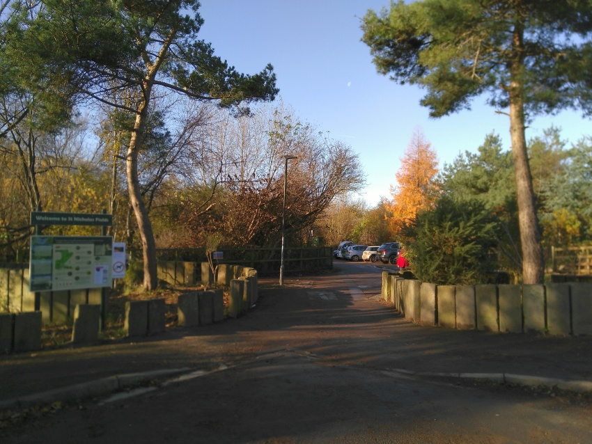 Approach to the Environment Centre from Rawdon Avenue