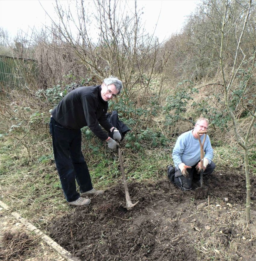 Ecotherapy participants clearing ground for wildflower sowing