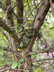 Lonely teddy in a tree at the nature reserve