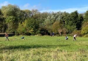 Volunteers scything in the butterfly meadow at St Nicks