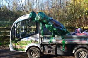 Tansy Beetle on Recycling Van