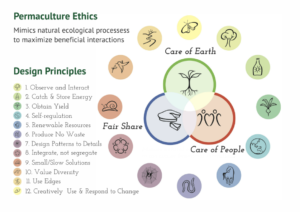permaculture ethics and principles, from oswego.edu
