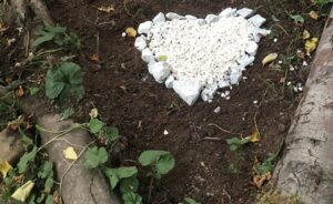 A love heart made of white stones on a bed of soil