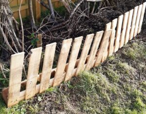 Tiphaine's palette fence protecting young saplings