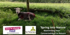 Spring Into Nature event poster 12 May 2021